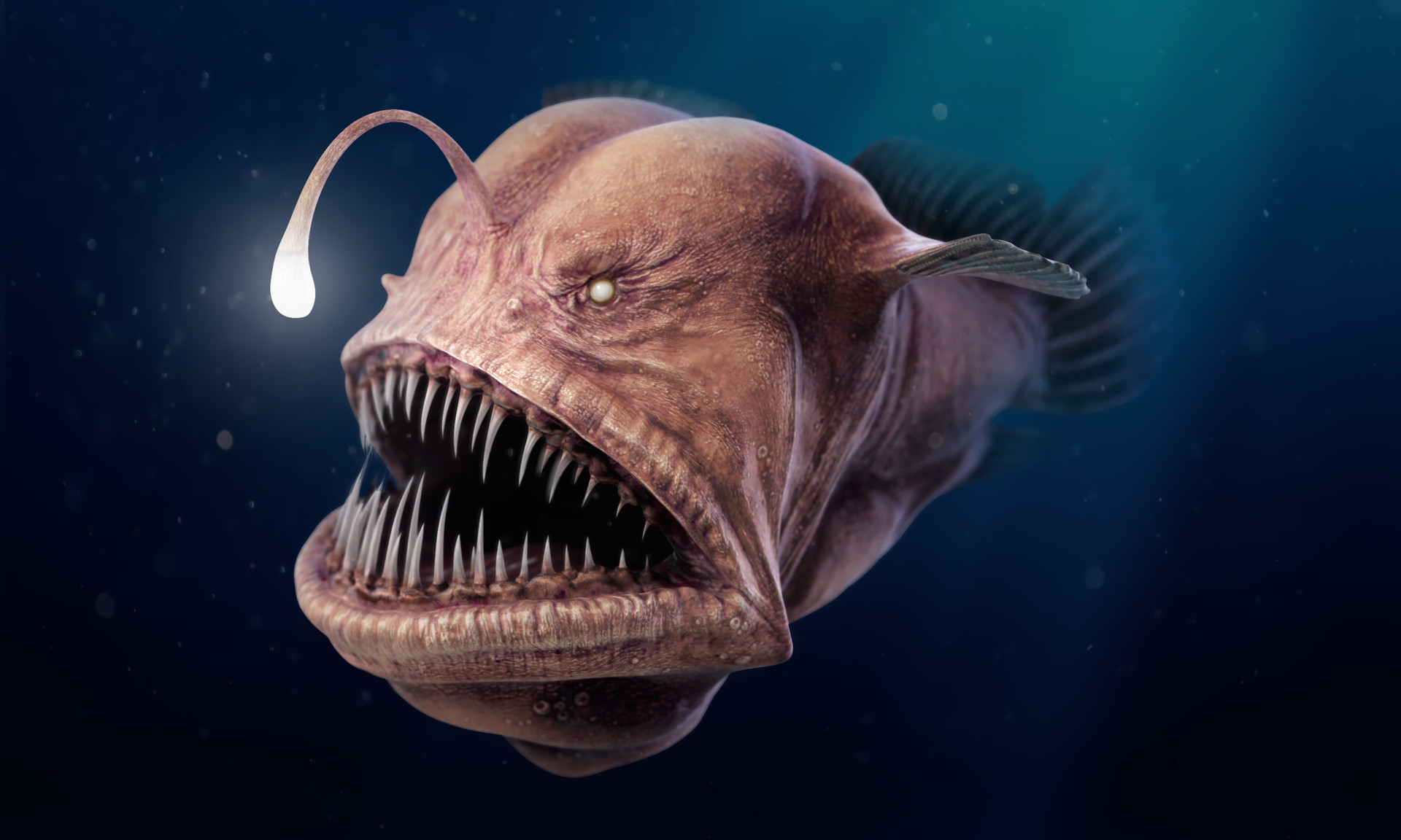 Fish That Swallow Bigger Fish