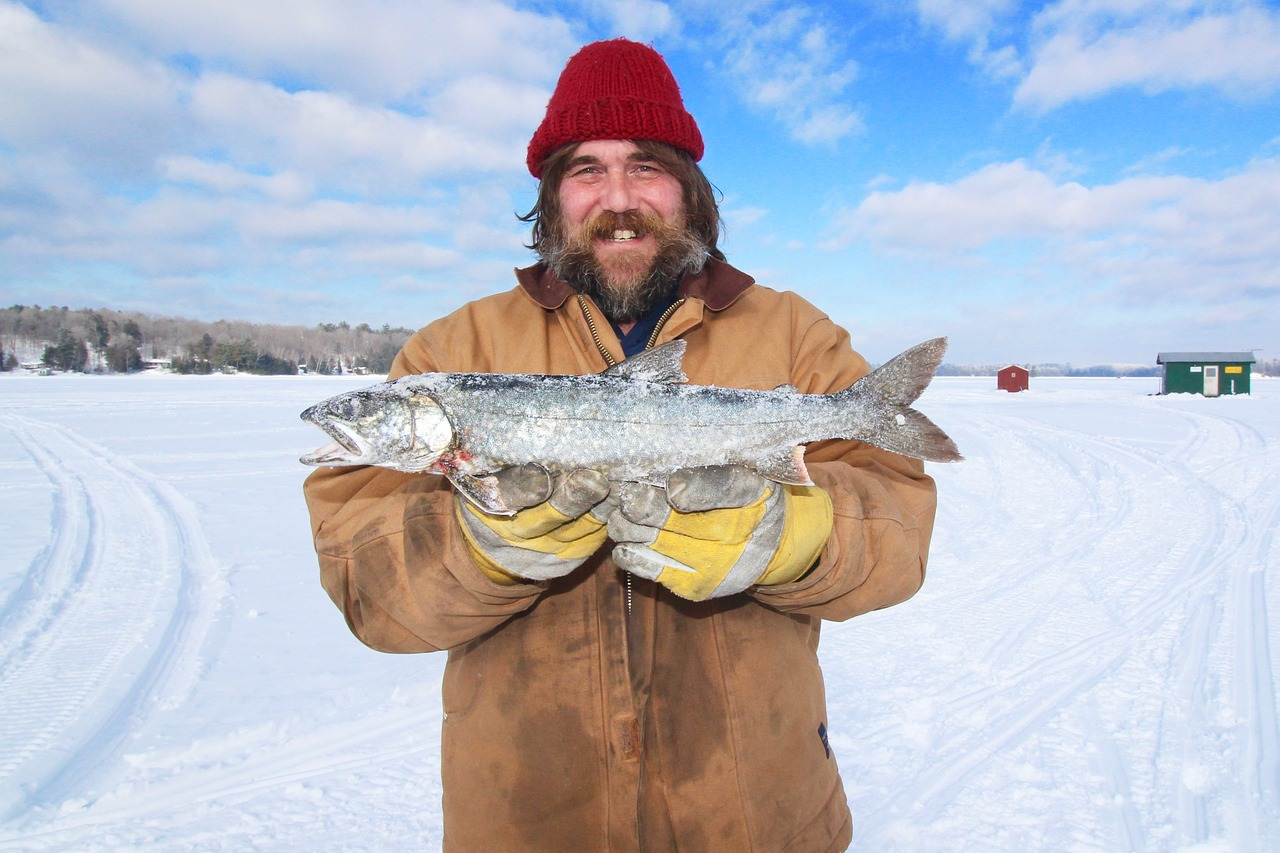 Can Fish Freeze and Still Live