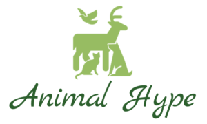animal hype logo