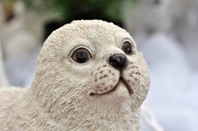 Cute Baby Seal Names