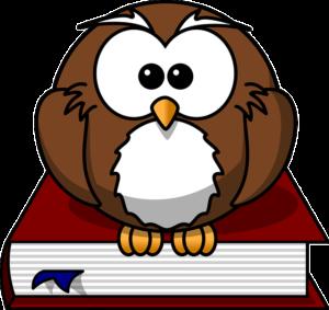 Cute Pet Owl Names