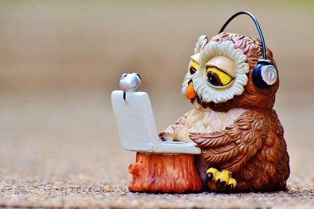Funny Pet Owl Names