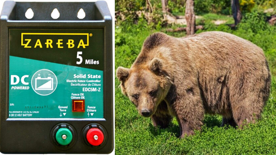 Best Electric Fence Charger For Bears