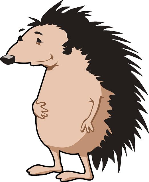 Disney Hedgehog Names