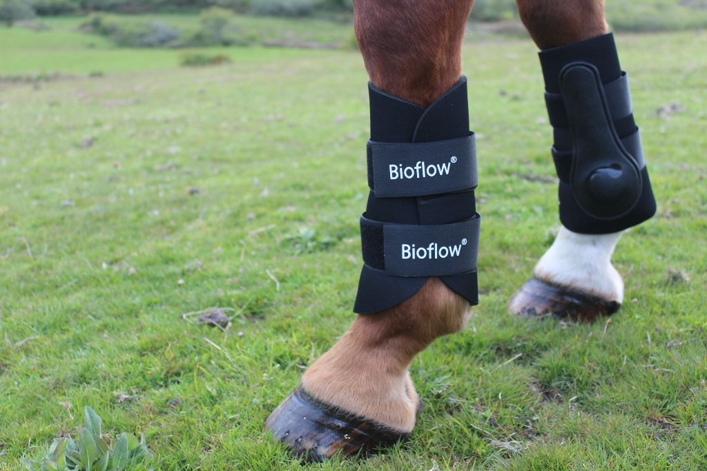 best magnetic boots for horses