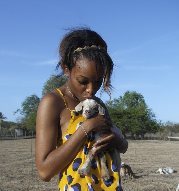 Baby Goat as a Pet