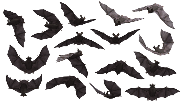 bats eating mosquitoes