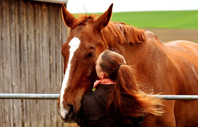Female Brown Horse Names