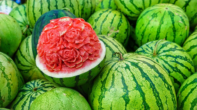 Is watermelon healthy for goats