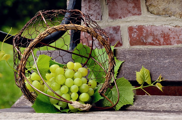 Grapes for Hermit Crabs