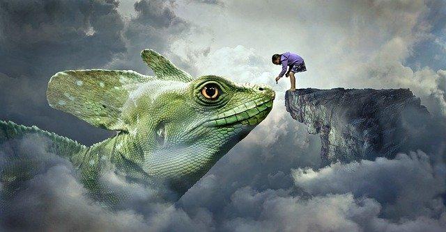 Lizard in dream
