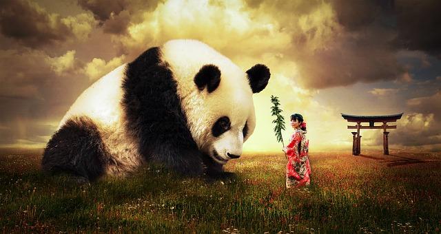 Panda in dream meaning