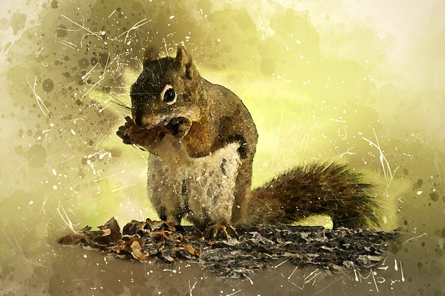 Squirrel in dream meaning