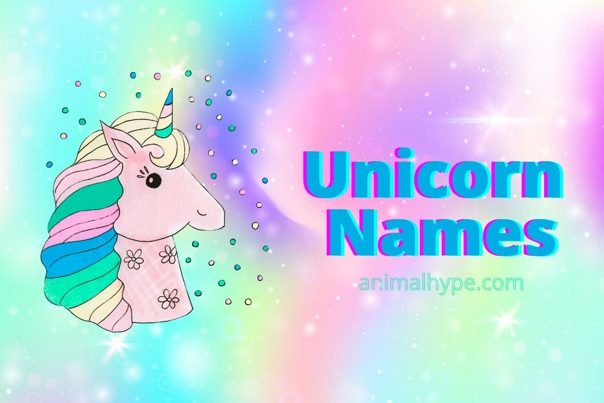 unicorn names